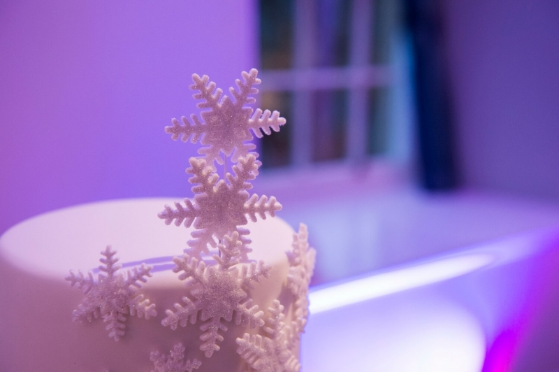 Detail of Winter Wedding Cake